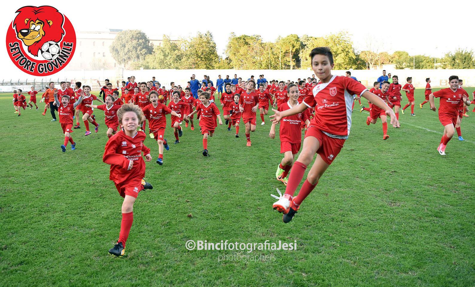 Jesina Calcio Settore GIovanile